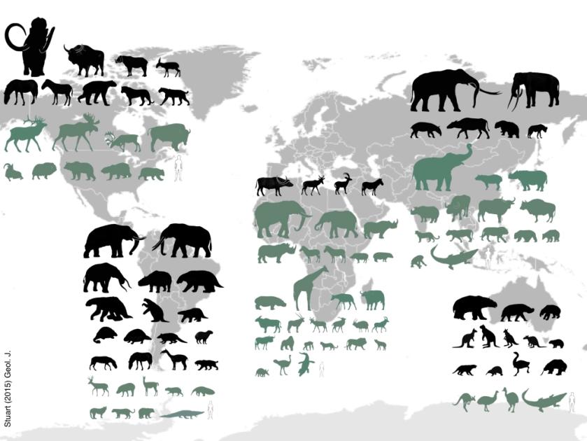 stuart_2015_megafauna-extinctions-001
